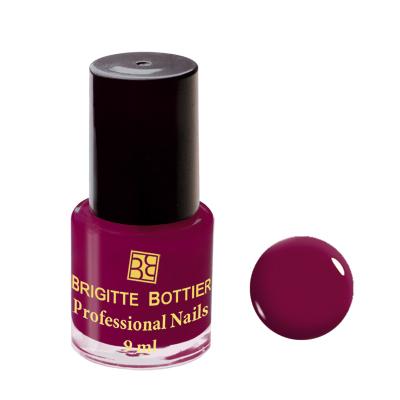 Лак для ногтей (оттенок 04, бордово-шоколадный) professional nails brigitte bottier